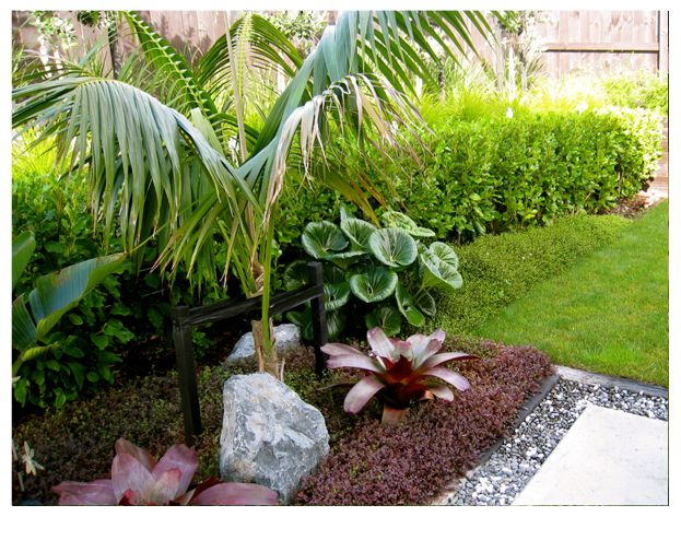 28 best images about garden ideas on pinterest gardens for Garden design ideas new zealand