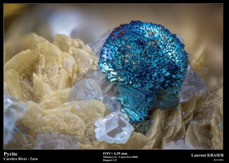 Pyrite. Carrière Rivert, Tarn, France FOV=4.39 mm Photo Laurent Kbaier