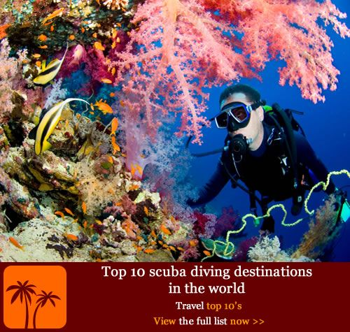 Best ScubaSnorkel Images On Pinterest Australia Beach And - The snorkeling guide to florida 10 spots for underwater exploring