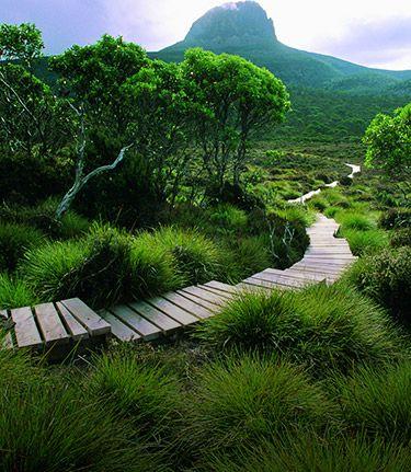Cradle Mountain Huts Overland Track Walk