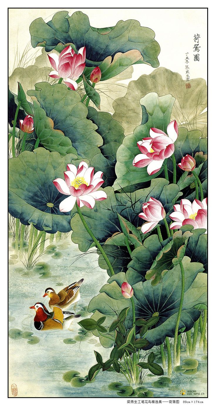 197 best art chinese images on pinterest chinese art chinese liang yan sheng chinese paintingchinese arthome artlotus flowerasian dhlflorist Choice Image