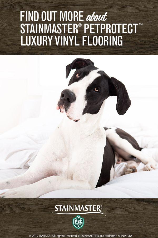 32 Best Vinyl Flooring Images On Pinterest Luxury Vinyl