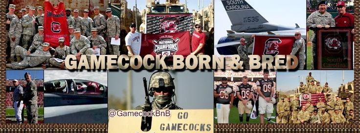 Gamecocks support the Military