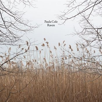 Paula Cole's 'Raven' made our Best Albums of 2013 list