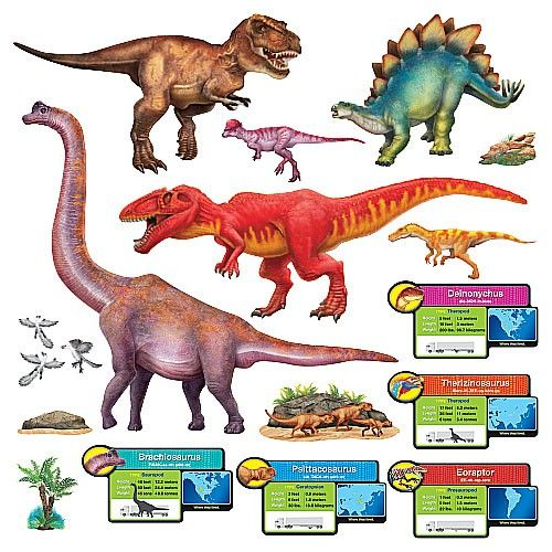 Discovering Dinosaurs Bulletin Board