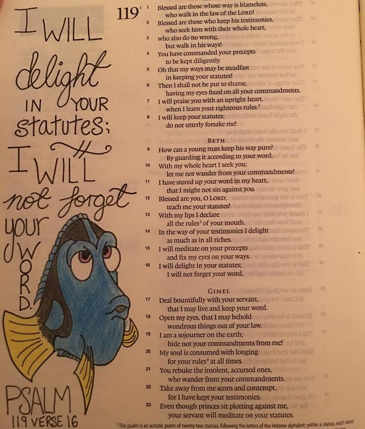 """Now here's a challenge - """"...I will not forget your word."""" Memorising #Scripture…"""