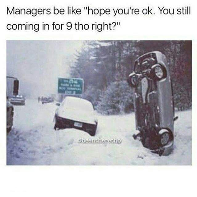 Image result for snow storm sarcasm