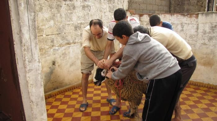 Idul Adha di Maroko - Tak Hanya Sembelih Kurban, Permen, Kue dan Baju Baru Juga…