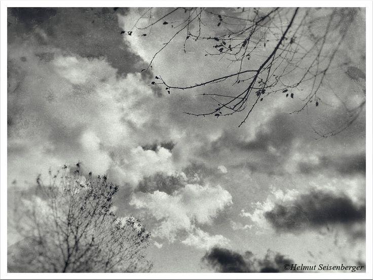Der Oktober neigt sich dem Ende zu. Kühle Temperaturen. Bäume zittern im heftigen Wind. Zeitumstellung. Photographie im Stil einer alten Filmkamera.   Ähnliche Artikel:Einfluss des Wetters auf die Arbeit eines SelbstständigenWinterspaziergangWas fotografierst Du denn da draußen um diese Uhrzeit?LiebesschlösserFröhliche Feiertage!WettrennenMitteilen: