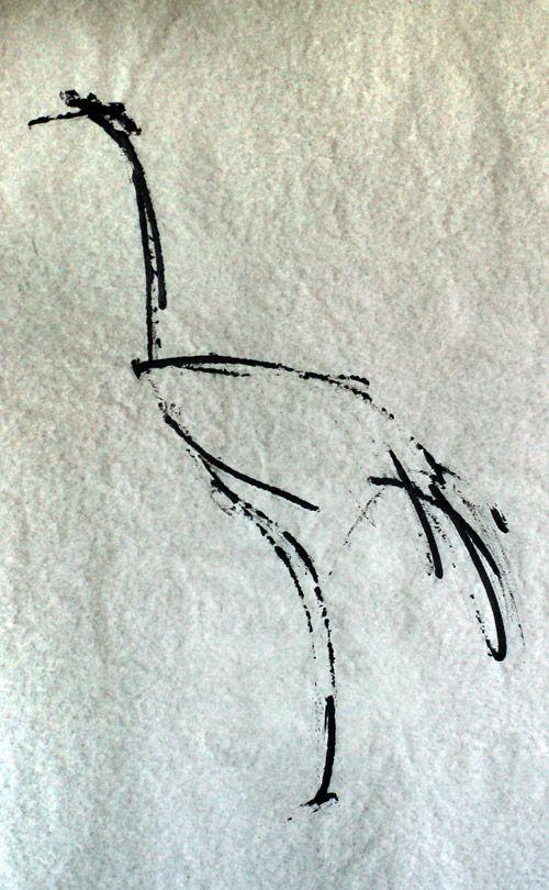 heron / by kasia dippel