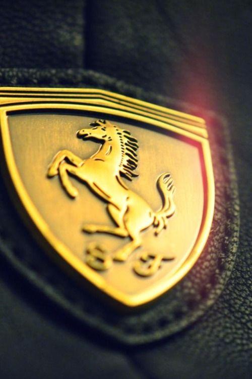 Gorgeous picture of a Ferrari logo.