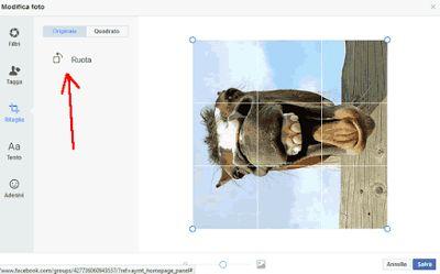 Ti è mai capitato di caricare una fotografia su facebook magari fatta con il cellulare per poi scoprire che è rivolta nel verso sbagliato? Magari hai fatto un bello scatto ma in verticale oppure a volte capita anche che le foto vengano girate in automatico dal programma della macchina fotografica (non ho mai capito il perchè). Vediamo dunque come risolvere il problema direttamente online imparando a ruotare foto su facebook in modo tale da poter caricare le nostre immagini senza aver bisogno…