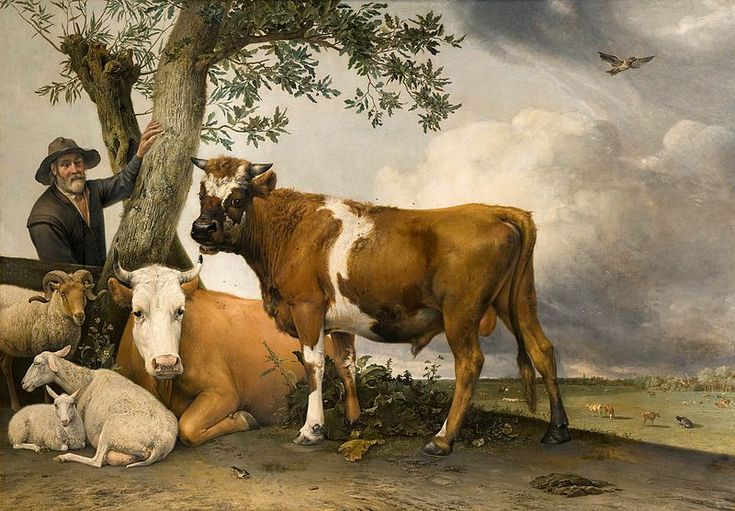 Paulus Potter and The Bull