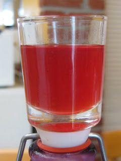 Liqueur de Framboises maison - Les recettes de Pauline