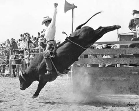 21 Best Broncs Amp The Blood Steers In The Mud Images On