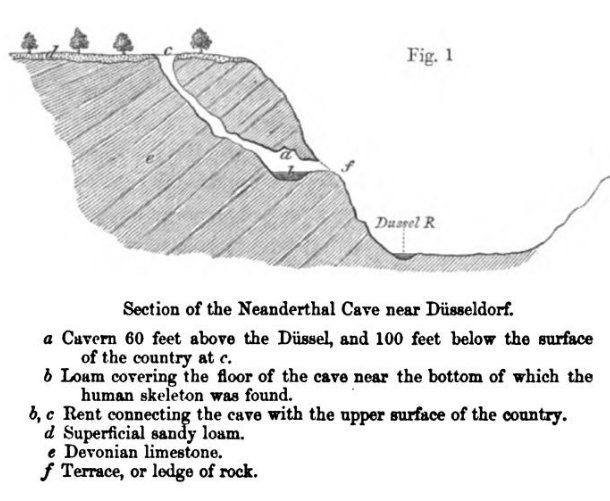 Charles Lyell's Antiquity of Man was published #OnThisDay 1863. In the book, he discussed Neanderthal #fossils & the cave they were found in