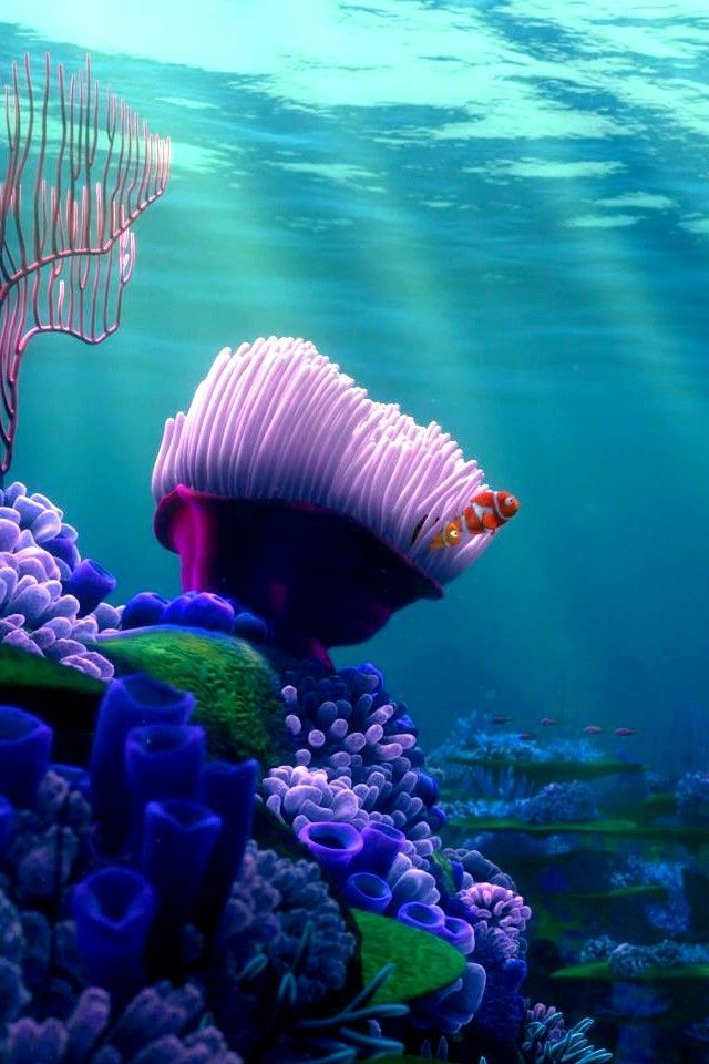 Nemo Wallpaper Iphone X Be A Pirate Or Die Nburkhardt Finding Nemo Iphone