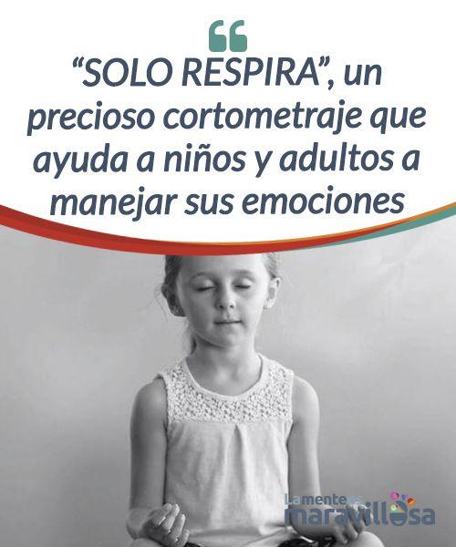 """""""SOLO RESPIRA"""", un precioso cortometraje que ayuda a niños y adultos a manejar sus emociones Este #cortometraje promueve la conciencia #emocional como un vehículo primario para #cambiar nuestro modo de vivenciar nuestras emociones. #Películas"""