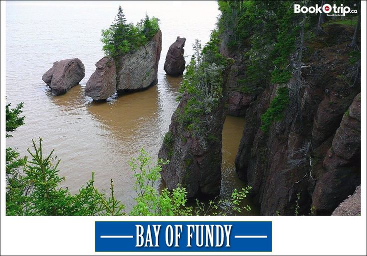 #BayofFundy is an enormous display featuring the magnitude of the Fundy tides anchors the new Fundy Discovery Aquarium. Call to book : (888) 379 1003