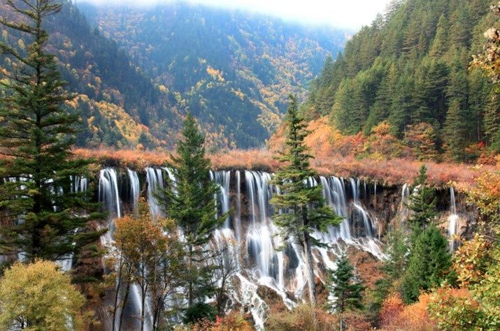 Jiuzhaigou Valley Forest, China