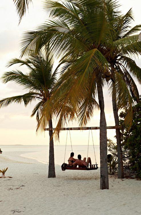 Palm tree swing seat.