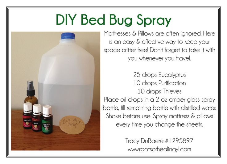 DIY Bed Bug Spray with Essential Oils
