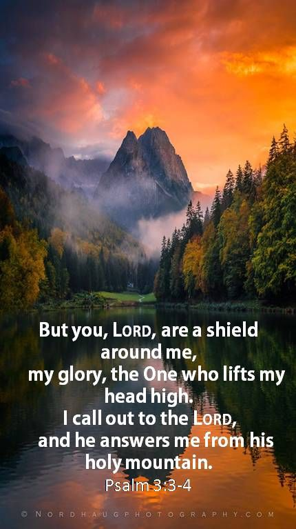 ♥- 'Psalms 3:3-5 (KJV) Thou, O Lord, art a shield for me; my glory, and the lifter up of mine head. - I cried unto the Lord with my voice, and He heard me out of His Holy Hill. Selah. - I laid me down and slept; I awaked; for the Lord sustained me. - O How Great, And Awesome Is He.-♥°°{DM} °°