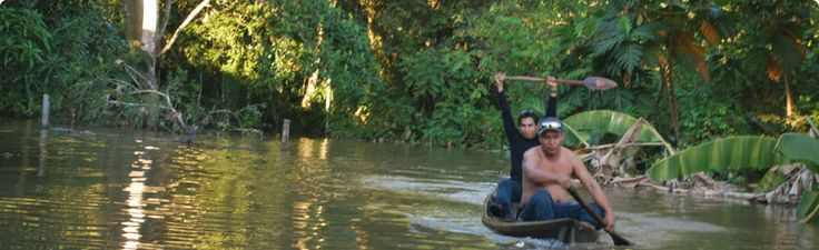 Experience Peru's #Amazon_Jungle in a comfortable way, living the #adventure as you always dreamed. http://www.amazonadventureperu.com/full-day-tours.php