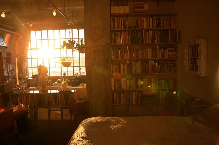 layout. huge window. lighting. books. short bookshelf room divider. plants. cozy.