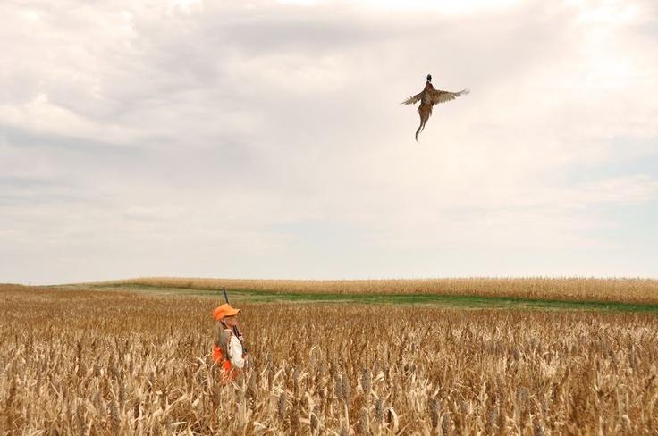 31 best black hills sd images on pinterest south dakota for South dakota fishing license
