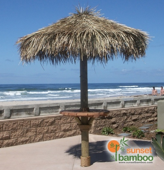 1000 Images About Palapa Ideas On Pinterest Roof Ideas