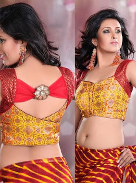 Best Indian Designer Saree Blouse Collection 2014 For Girls