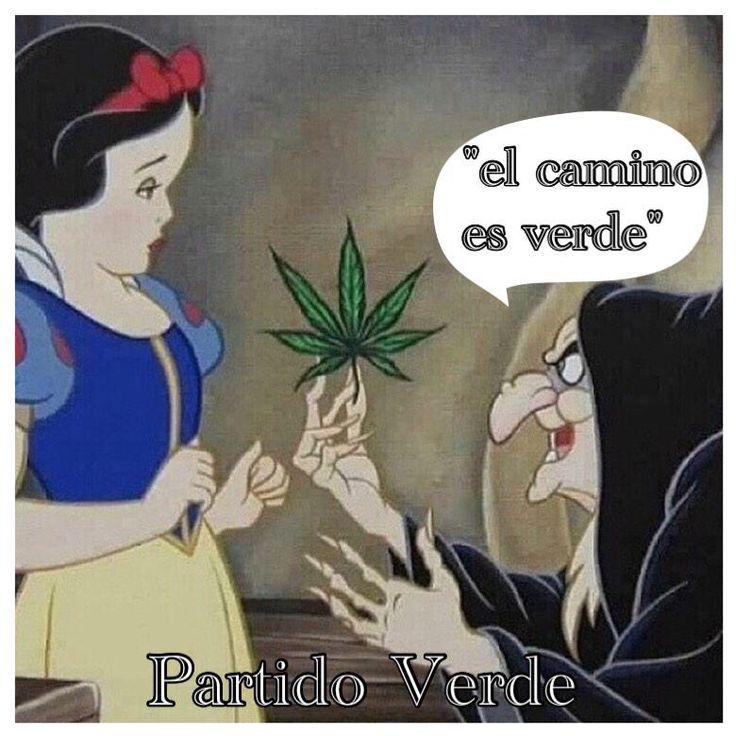 @JavierMaloMx: 'El camino es verde' ~Partido Verde. #Elecciones2015 http://t.co/OtOk7PUMWk