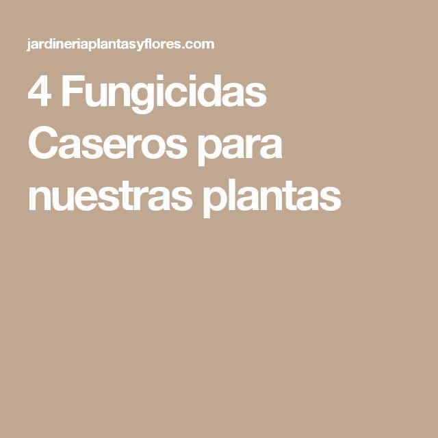 4 Fungicidas Caseros para nuestras plantas