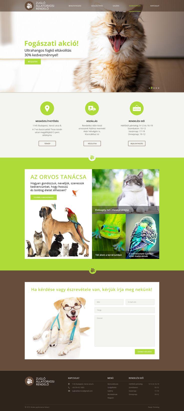 webdesign terv - állatorvos