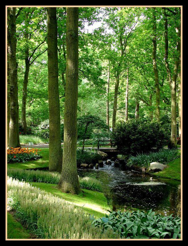 Lisse netherlands copyright henri collard paisajes - Jardines y paisajes ...
