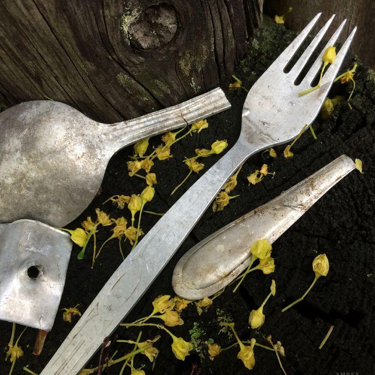 Fork & broken spoon / Вилка и сломанная ложка. #fork; #photo; #art; #cutlery; #вилка; #фотография; #искусство;