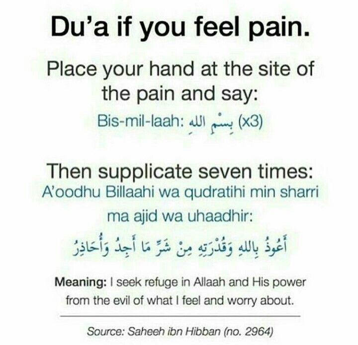 Ibn Hibban