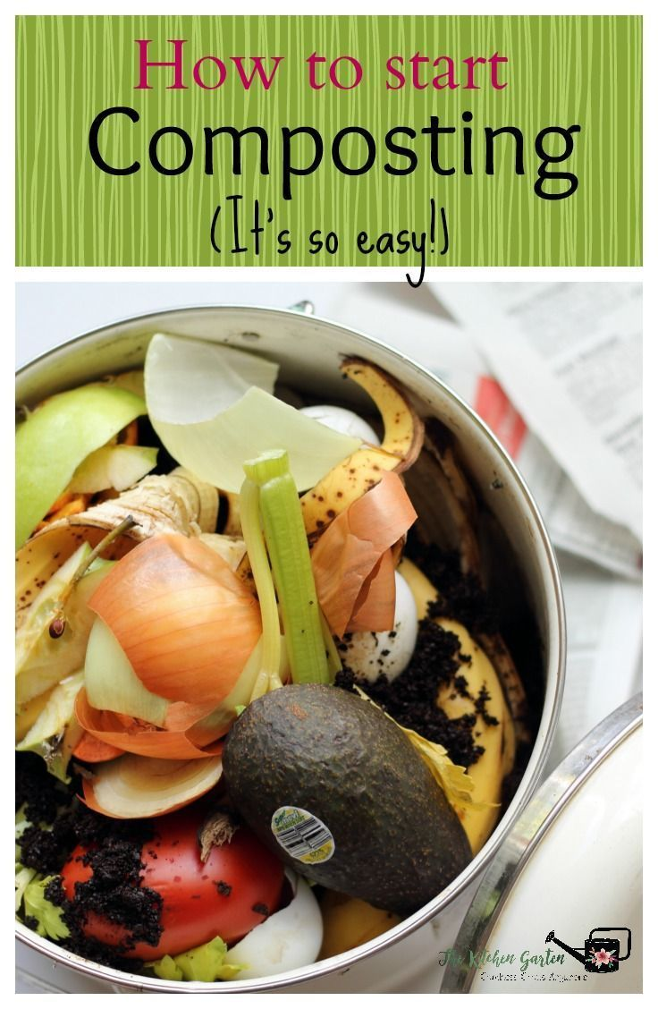 how to start composting part 1