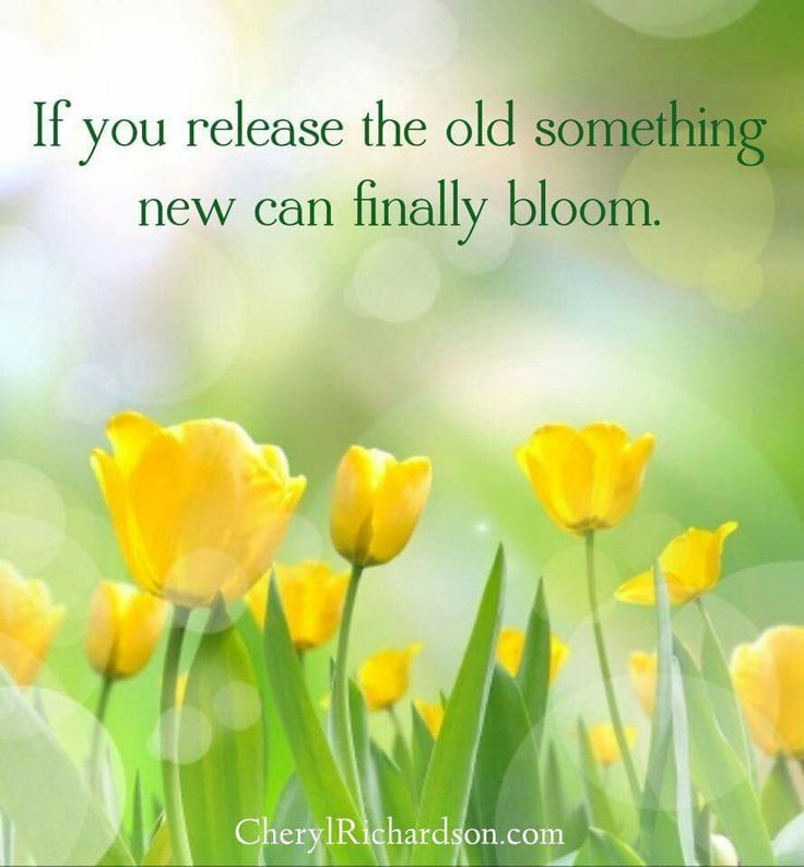 ...release....