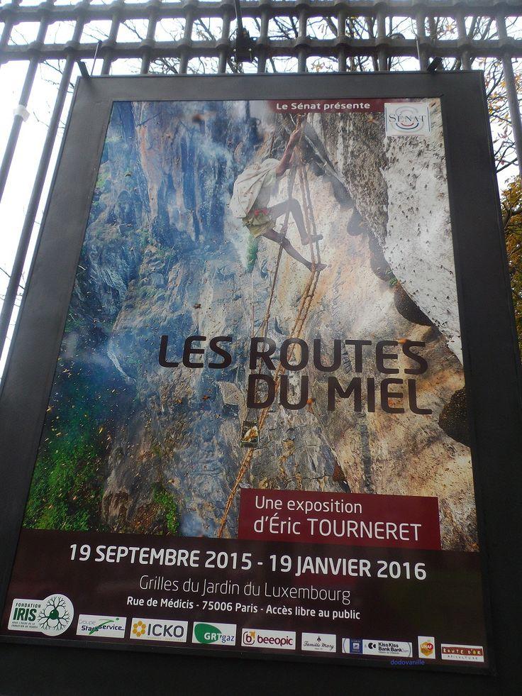 Magnifique exposition de 80 photos voir sur les grilles du jardin du luxembourg expositions - Jardin du luxembourg exposition ...
