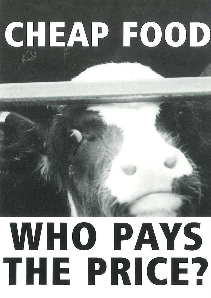 'Who pays the price?' A campaign postcard from the 1990s 'Compassion in World Farming'