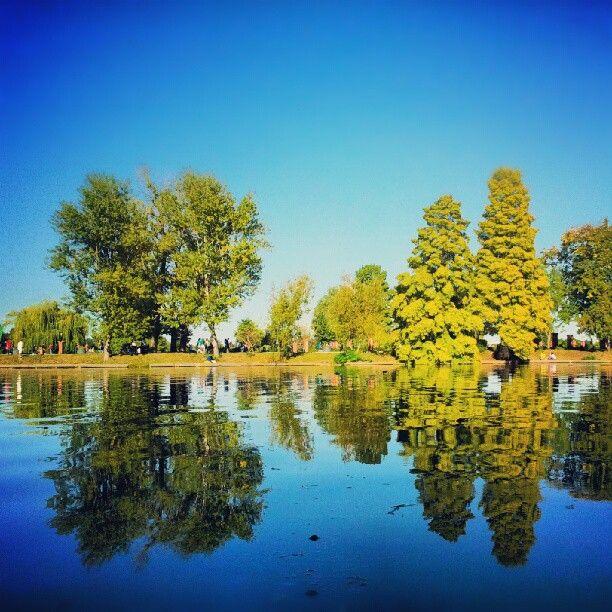 Parcul Herăstrău in București, București