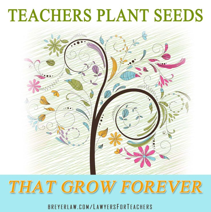 Quotes About Teachers Planting Seeds: 117 Best Images About The Husband And Wife Law Team's