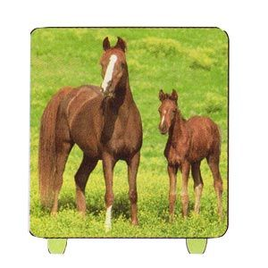 Wild Horses Candle