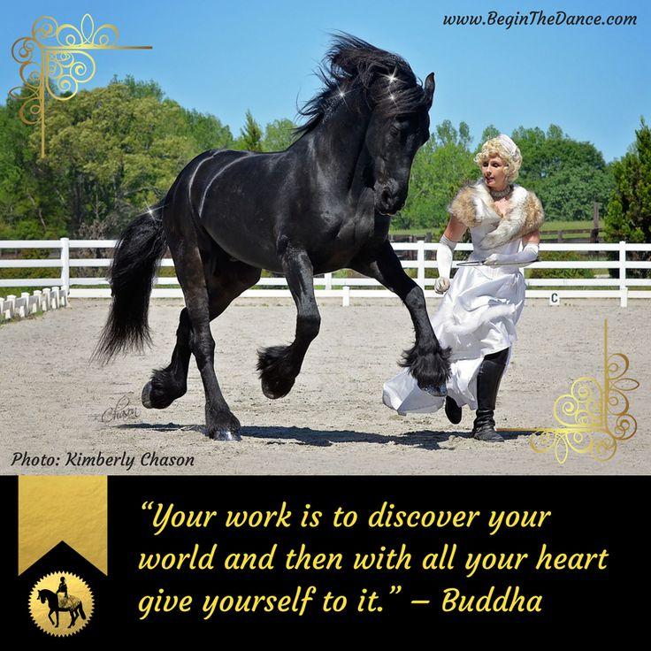 Love this Buddha quote. <3 Sandra Beaulieu working at liberty with her Friesian gelding Douwe.