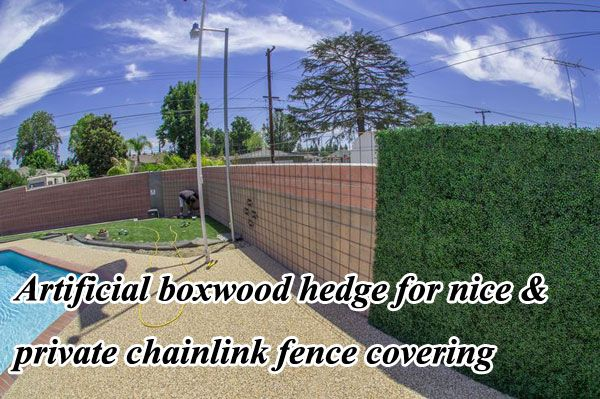 Artificial hedge is a kind of nice and likelife artificial plants wall to quickly and easily transform ugly chainlink fence into a gorgeous greenery wall.
