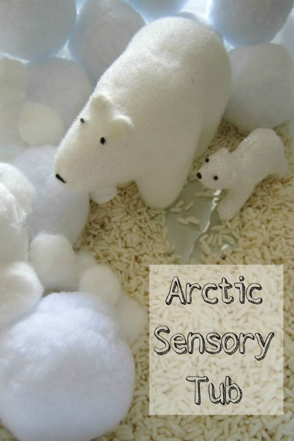 Put together an Arctic Sensory Tub and explore, temperature, texture as well as connect with the story Forever by Emma Dodd and retell using toy animals.