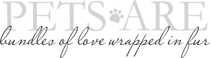 so true :): Dogs, Pets, Furbabi, Pet Ideas, Crazy Cat, Pet Quotes, Legs Kids, Fur Baby, Animal
