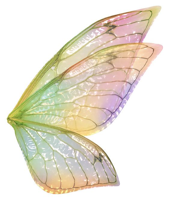 Digital Overlays Png Fairy Wings Set 6 Digital Wings Fantasy Art High Res Fine Art Photography Photoshop Overlays Fairy Wings Wings Fairy